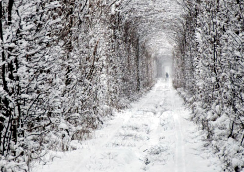 Tunnel of Love Ukraine in Winter
